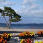 Havsutsikt har man nästan överallt i Åhus
