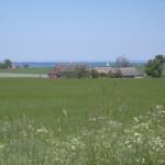 Vidsträckta fält och långt borta skymtar Öresund
