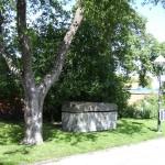 Stensarkofagen i lummig grönska