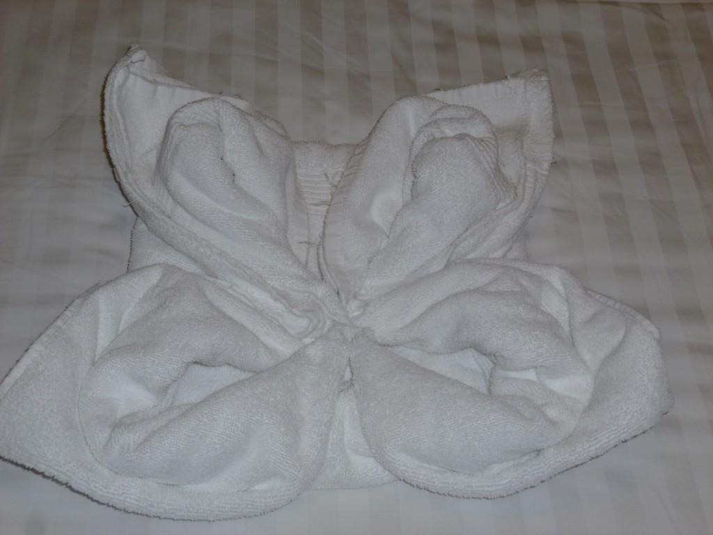113 Hytten. Kenroy, som passade upp oss, gjorde dekorationer av handdukar. Här en fjäril.