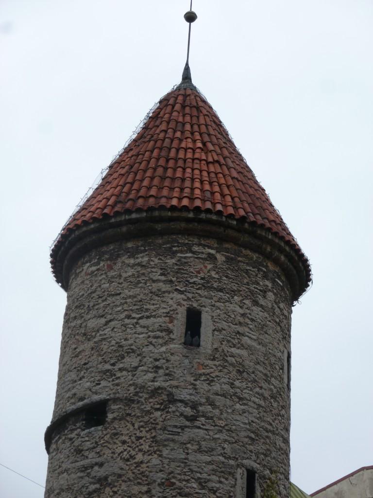 209 Tallin Duvorna i sitt torn i stadsmuren